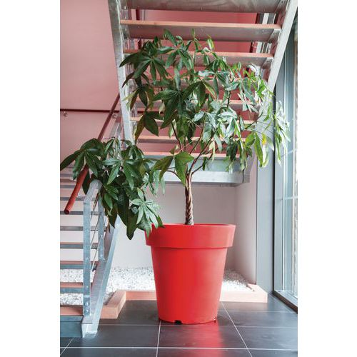 Vaso design colorato - 200 L