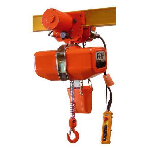 Paranco elettrico elephant efa efb con carrello elettrico for Paranco elettrico 1000 kg